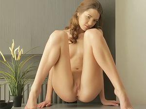 Flawless Oiled Solo Girl Vibrates Her Throbbing Clitoris
